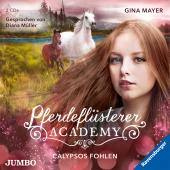 Pferdeflüsterer-Academy - Calypsos Fohlen, 2 Audio-CD