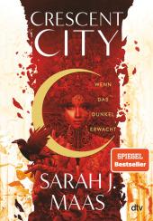 Crescent City - Wenn das Dunkel erwacht Cover