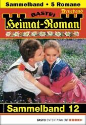 Heimat-Roman Treueband 12 - Sammelband