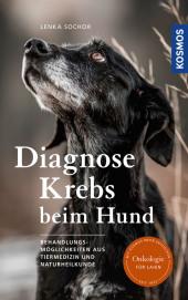 Diagnose Krebs beim Hund