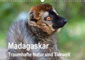 Madagaskar. Traumhafte Natur und Tierwelt (Wandkalender 2021 DIN A3 quer)