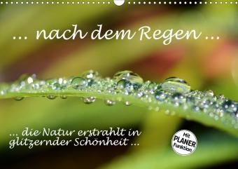 ... nach dem Regen ... die Natur erstrahlt in glitzernder Schönheit (Wandkalender 2021 DIN A3 quer)