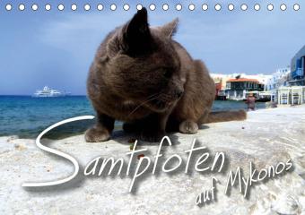 SAMTPFOTEN auf Mykonos (Tischkalender 2021 DIN A5 quer)