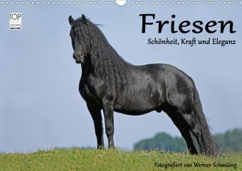 Friesen - Schönheit, Kraft und Eleganz (Wandkalender 2021 DIN A3 quer)