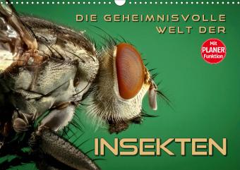 Die geheimnisvolle Welt der Insekten (Wandkalender 2021 DIN A3 quer)
