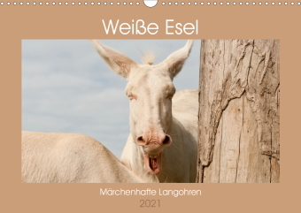 Weiße Esel - Märchenhafte Langohren (Wandkalender 2021 DIN A3 quer)