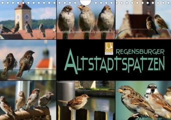 Regensburger Altstadtspatzen (Wandkalender 2021 DIN A4 quer)