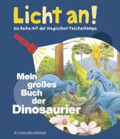 Mein großes Buch der Dinosaurier Cover