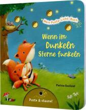 Mein Puste-Licht-Buch: Wenn im Dunkeln Sterne funkeln Cover