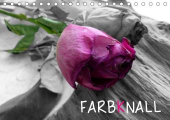 FARBKNALL (Tischkalender 2021 DIN A5 quer)