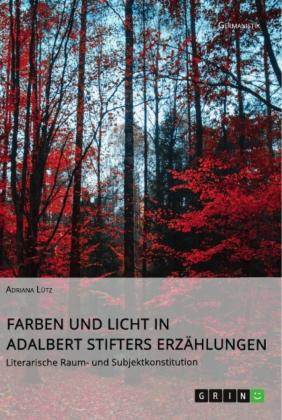 Farben und Licht in Adalbert Stifters Erzählungen. Literarische Raum- und Subjektkonstitution