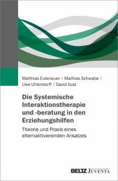 Die Systemische Interaktionstherapie und -beratung in den Erziehungshilfen