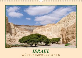 ISRAEL Wüstenimpressionen (Wandkalender 2021 DIN A3 quer)