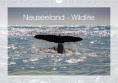 Neuseeland - Wildlife (Wandkalender 2021 DIN A4 quer)