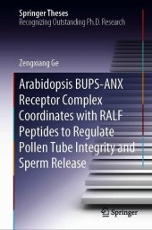 Arabidopsis BUPS-ANX Receptor Complex Coordinates with RALF Peptides to Regulate Pollen Tube Integrity and Sperm Release