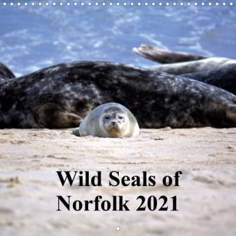 Wild Seals of Norfolk (Wall Calendar 2021 300 × 300 mm Square)