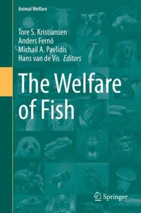 The Welfare of Fish