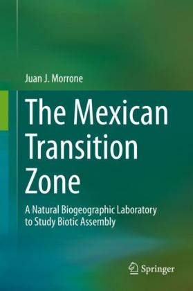 The Mexican Transition Zone