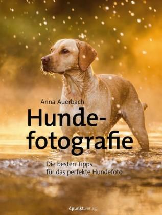Hundefotografie