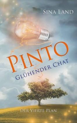 Pinto - Der vierte Plan