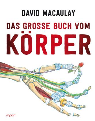Das große Buch vom Körper
