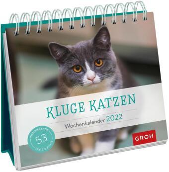 Kluge Katzen 2022