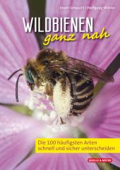 Wildbienen ganz nah