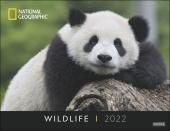 Wildlife Posterkalender National Geographic 2022