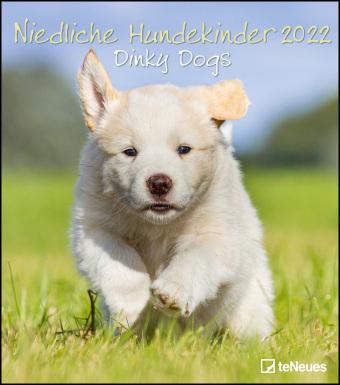 Niedliche Hundekinder 2022 - Wand-Kalender - Tier-Kalender - 30x34