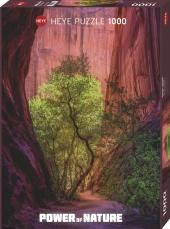 Singing Canyon Puzzle