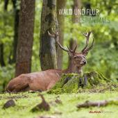 Wald & Flur 2022 - Wand-Kalender - Broschüren-Kalender - 30x30 - 30x60 geöffnet