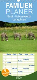 Esel - liebenswerte Langohren (Wandkalender 2022 , 21 cm x 45 cm, hoch)